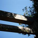 ATSUTA JINGU(熱田神宮) ///【LEICA M10 + SUMMILUX-M F1.4/50mm ASPH】のイメージ