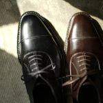 WH (ダブルエイチ) WHS-0110 Straight chip Shoes (干場氏 スペシャル モデル) Trench Last (トレンチラスト) ANNONAY Vocalou Calf Leather ストレートチップ シューズ BLACK (ブラック) , DARK BROWN (ダークブラウン) MADE IN JAPAN(日本製) 2019 春夏 【第2便ご予約開始】愛知 名古屋 alto e diritto アルトエデリット 洋服屋 セレクトショップ