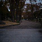 久屋大通公園のイメージ