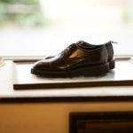 WH (ダブルエイチ) WHS-0110 Straight chip Shoes (干場氏 スペシャル モデル) Trench Last (トレンチラスト) ANNONAY Vocalou Calf Leather ストレートチップ シューズ DARK BROWN (ダークブラウン) MADE IN JAPAN(日本製) 2019 春夏新作 【第2便入荷しました】【第2便フリー分販売開始】のイメージ