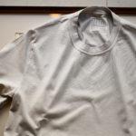 FEDELI(フェデーリ) Crew Neck T-shirt (クルーネック Tシャツ) ギザコットン Tシャツ GREGE (グレージュ・11) made in italy (イタリア製) 2020 春夏 【ご予約受付中】のイメージ